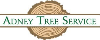 Adney Tree Service